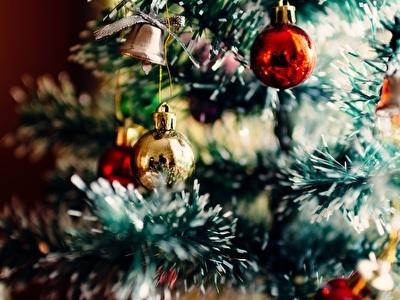 Kerst arrangement - Va € 225,00 p.p.